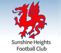 Sunshine football club